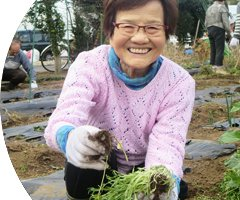 幸せ農園:イメージ
